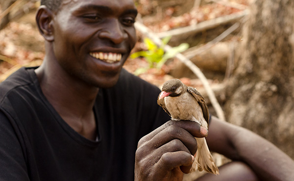New paper on honeyguide-human interactions