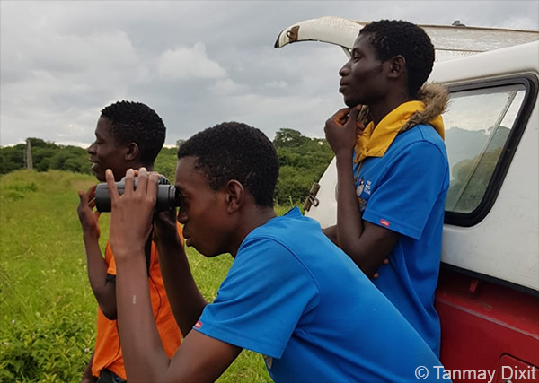A truncated but successful rainy season, including filming of indigobirds and whydahs for upcoming documentary