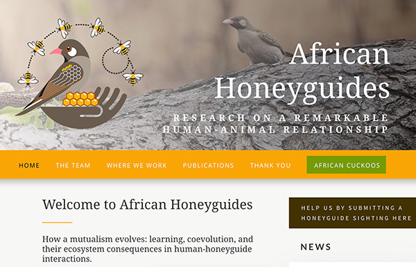 AfricanHoneyguides – sister research project website now live