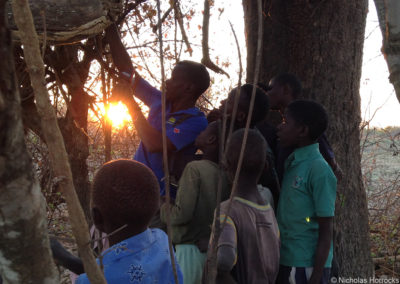 Collins Moya showing farmworkers' children the contents of a Black-collared Barbet's nest-hole, using an endoscope.