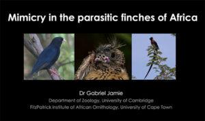 Gabriel Jamie talk at African BirdFair